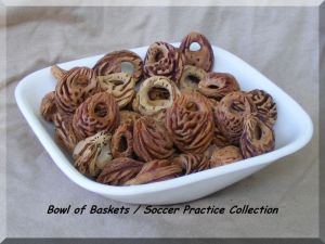 Bowl of Baskets